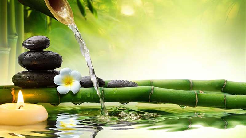 Le virtù antiaging del bambù