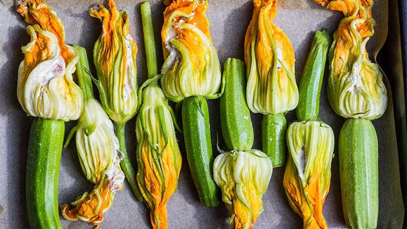 2 ricette con le zucchine. Le ricette di cucina facili e veloci
