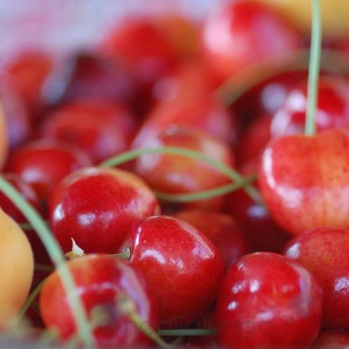 Coppette di ciliegie alla crema